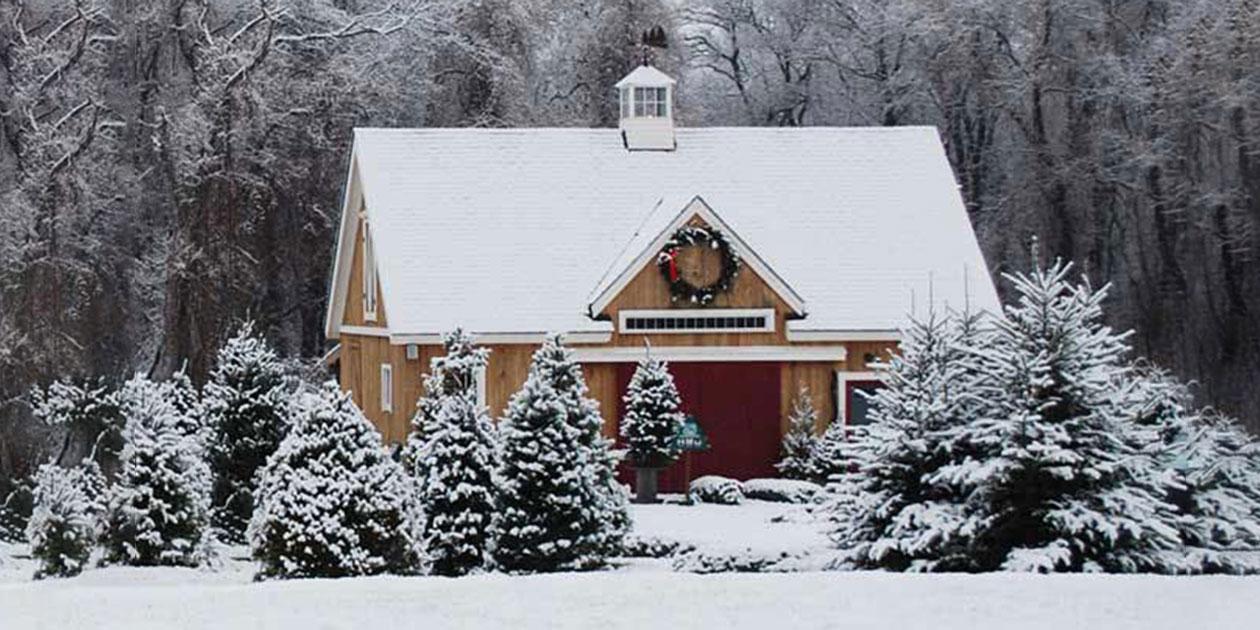 Clark's Christmas Tree Farm - RI Christmas Tree Growers Association